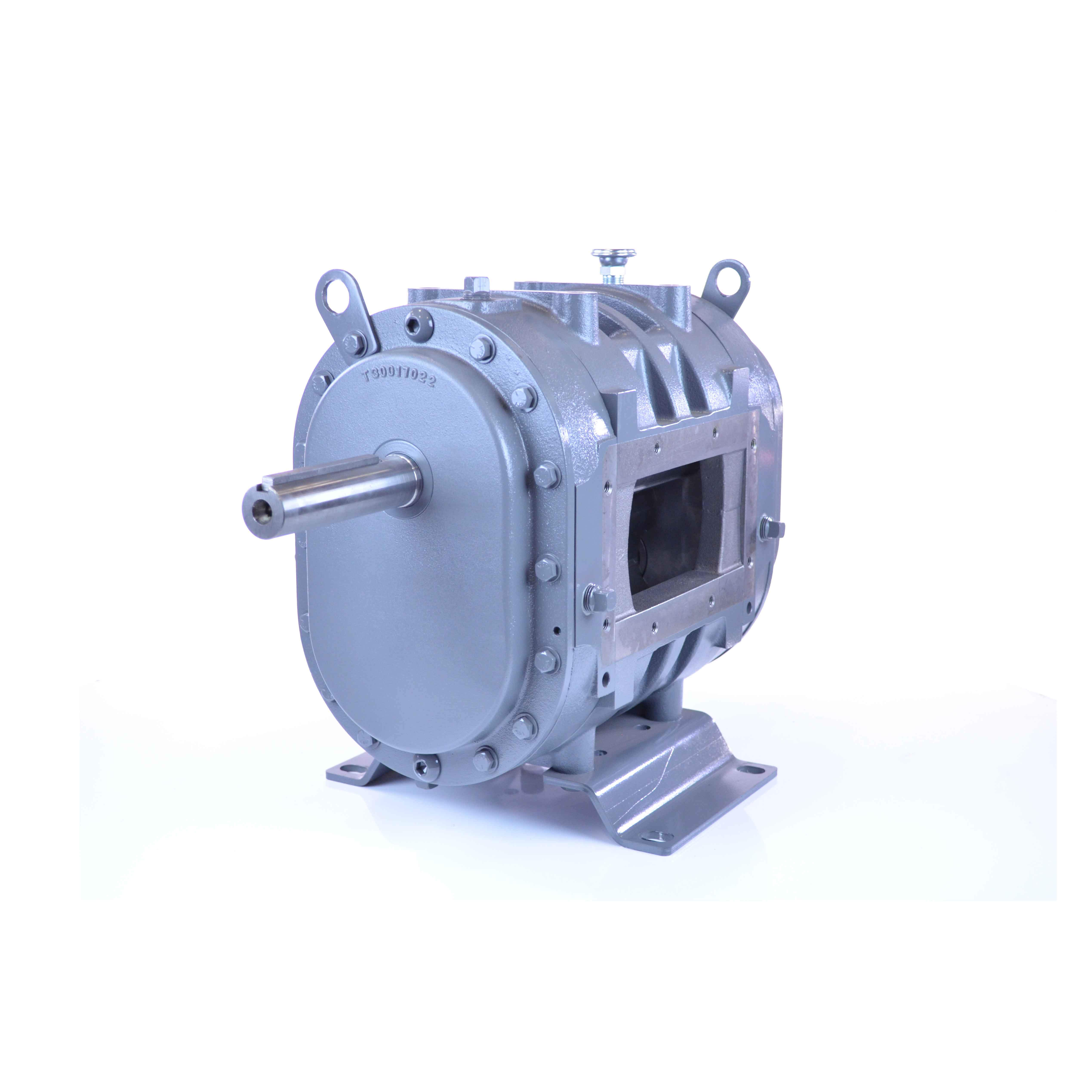 Positive Displacement Blower : Rootsflo positive displacement blower